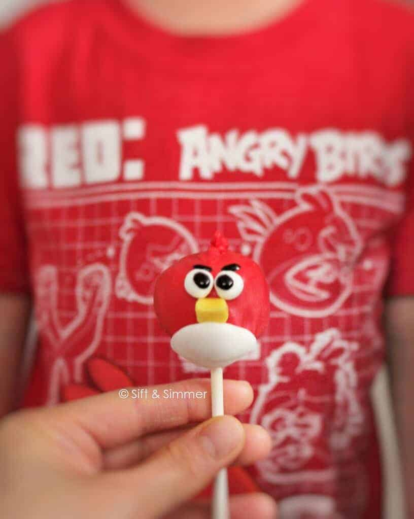 Angry Bird Cake Pop in front of Angry Bird shirt.