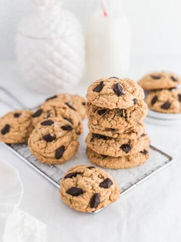 SunButter Chocolate Chunk Cookies1